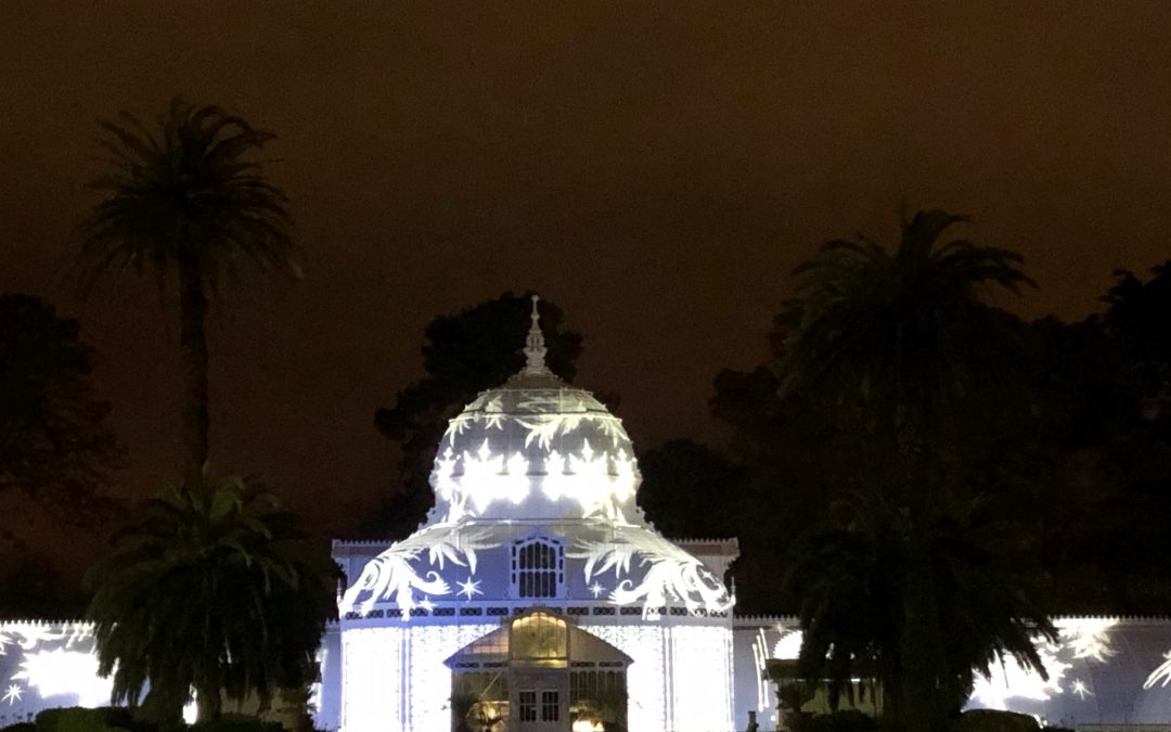 Conservatory of Flowers Light Show and Summer Solstice Concert