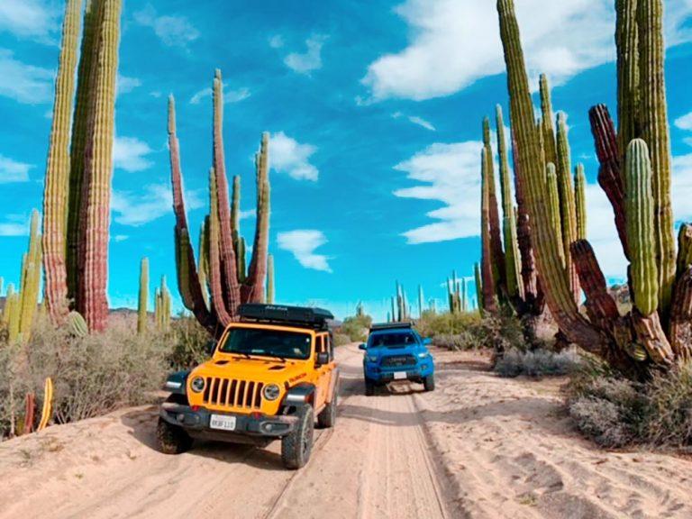 cypress overland jeep desert 2