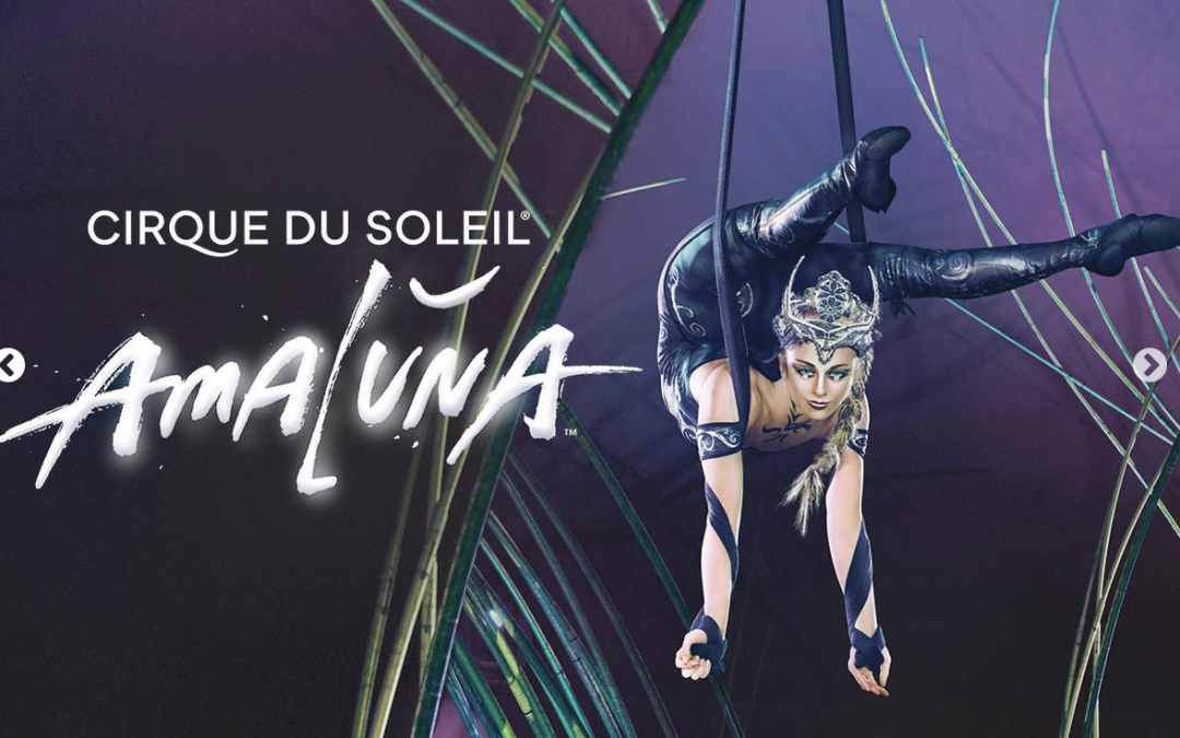 Cirque du Soleil, Amaluna sous le Big Top à San Francisco