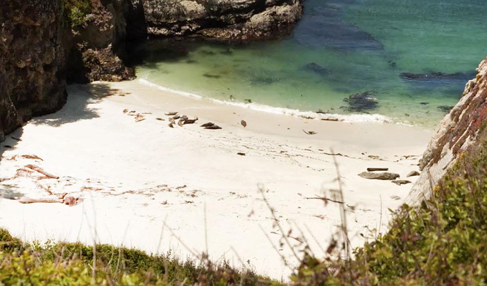 Video – The Treasure Island of Stevenson at Point Lobos